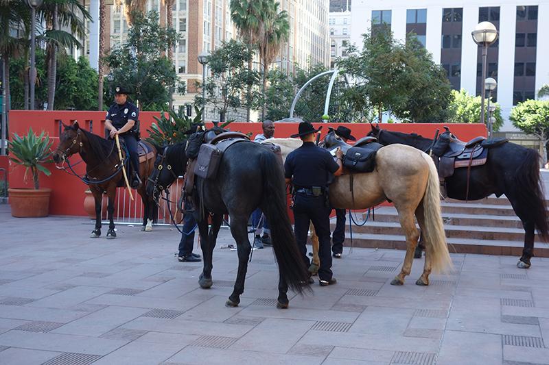 LAPD Cowboys