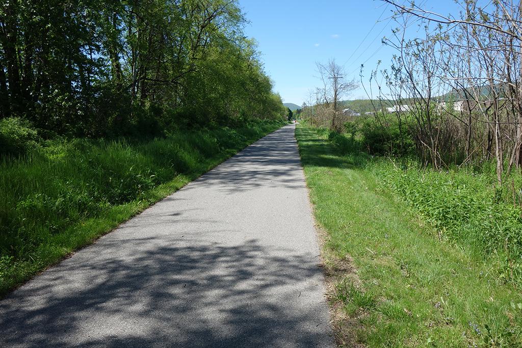 Lycoming Creek Bikeway